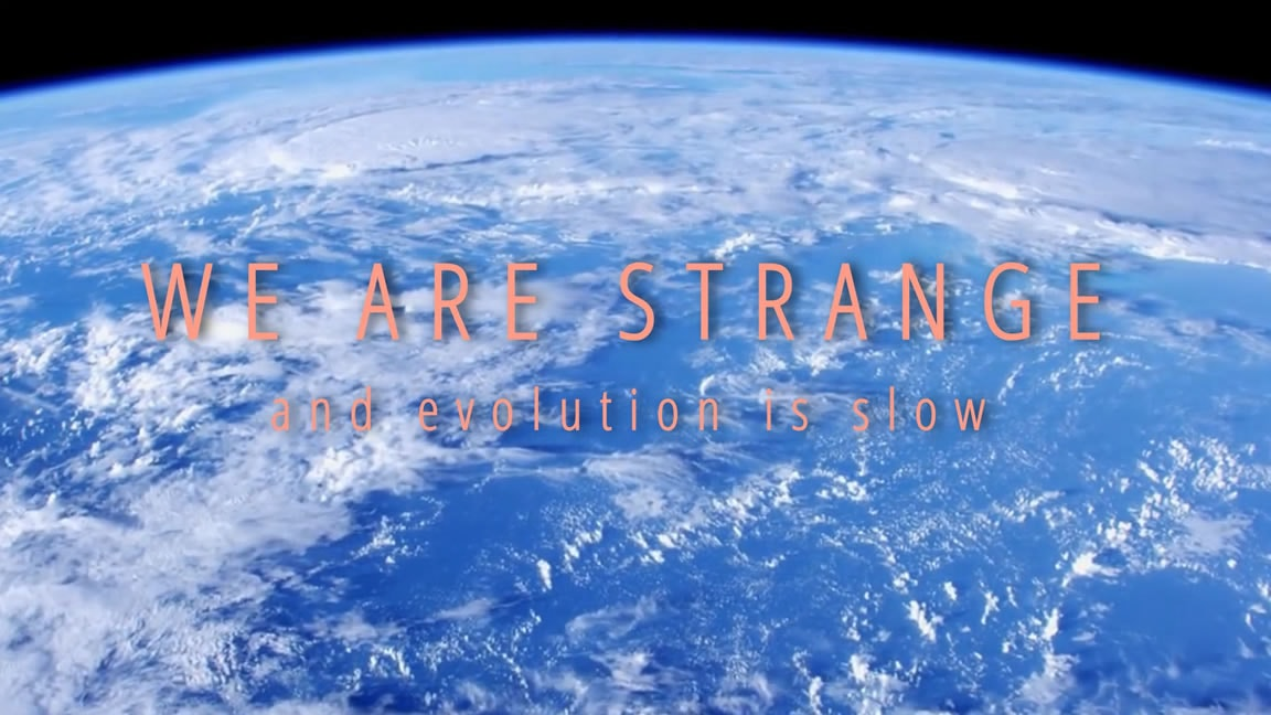 We are strange and evolution is slow